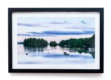 James Correia Serenity Photograph $85