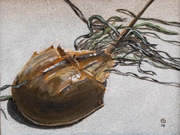 Tom Quinn Horseshoe Crab with Seaweed Acrylic $300