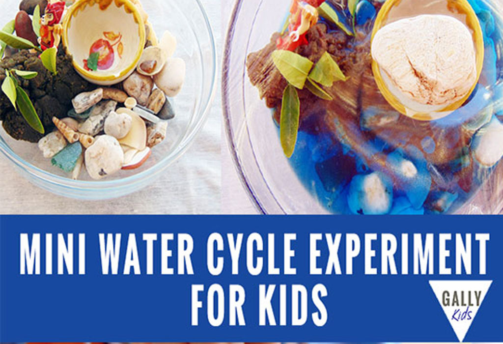 Mini water cycle experiment using a bowl. An easy activity for preschoolers. @gallykids