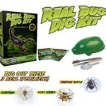 Archaeology science kit for kids - real bug digging