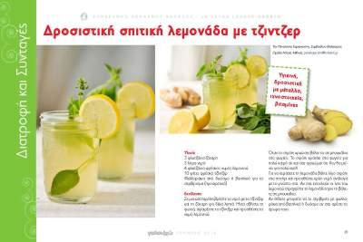 Δροσιστική σπιτική λεμονάδα