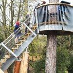 STIHL Treetop Walkway SH Structures