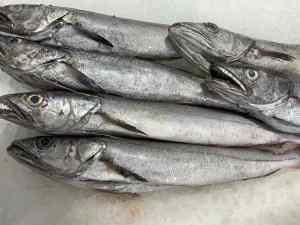 pescada de huelva