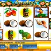 luau-loot-williams-bluebird-1-slot-machine--1