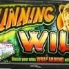 running-wild-williams-bluebird-1-slot-machine--1