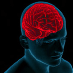 10 more resources to boost your brain power