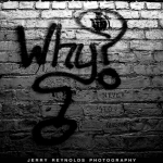 Why asking 'WHY' is so damn important