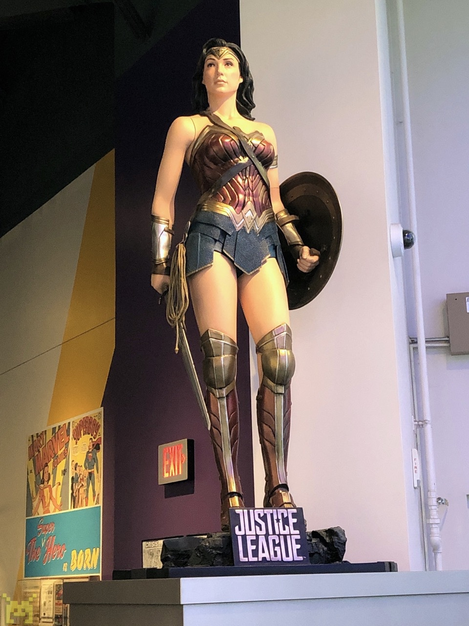 Wonder Woman of the Justice League