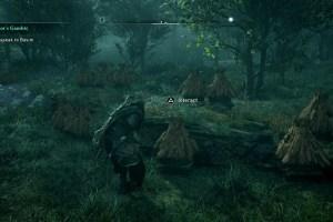 Assassin's Creed Valhalla Honey Location
