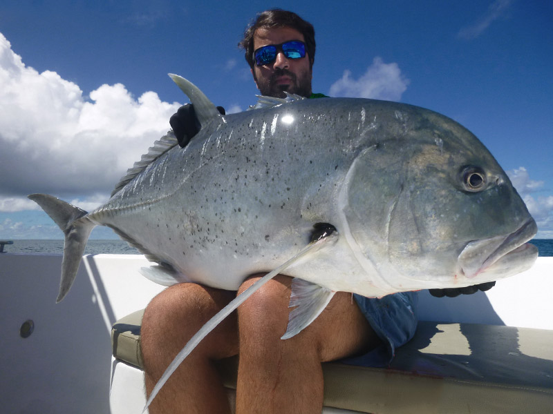 giant-trevally-9_popping_andaman_ripple-fisher-rods_shimano-stella-reels_amegari-popper-sultan