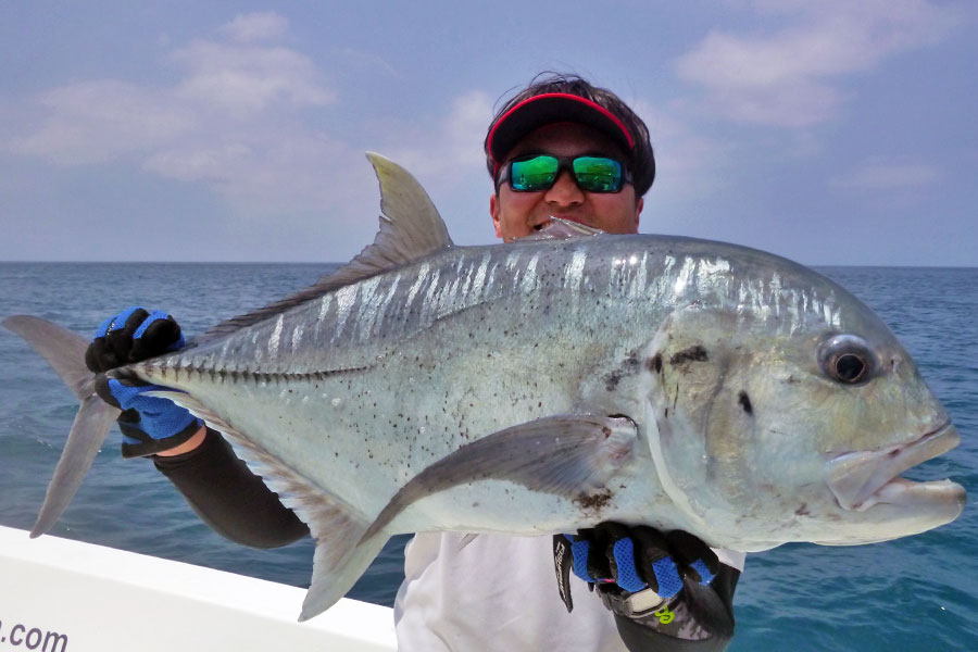 giant-trevally_popping_andaman_carpenter-endless-passion-85-36-rod_biomaster-sw-10000-reel_dzanga-b-cup-lure_chen