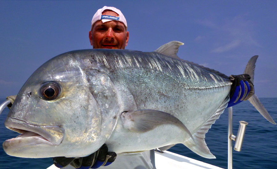 giant-trevally_popping_andaman_ripple-fisher-ultimo-rod_shimano-stella-10000-reel_matteo