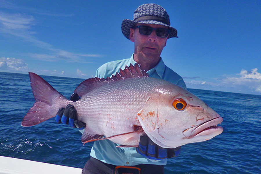 herve_twin-spot-snapper_popping_andamans_daiwa-travel-rod_daiwa-saltiga-reel_halco-popper