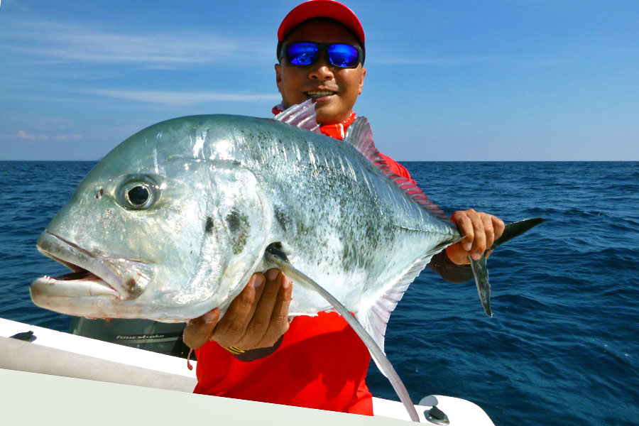giant-trevally_popping_andaman_carpenter-78h-rod_shimano-stella-18000-reel_hammerhead-e-cup-popper_jefry