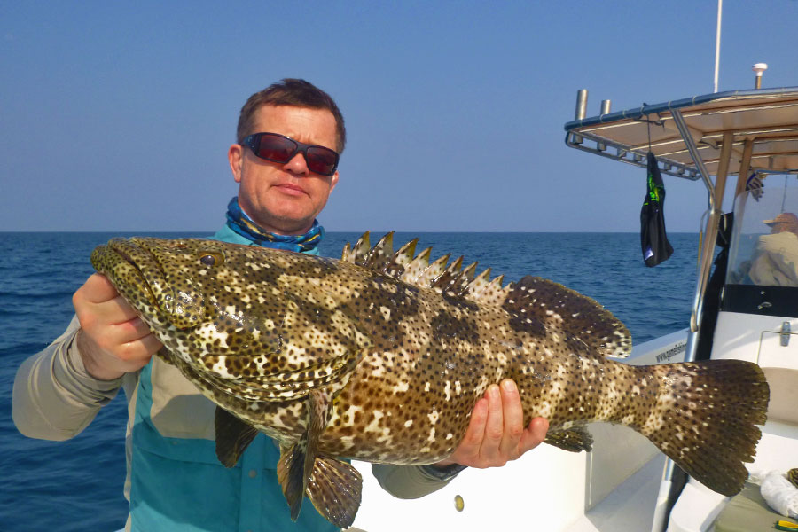 grouper_jigging_andaman_major-craft-np-jack-rod_-tp-3000-reel_asari-jig_sergii