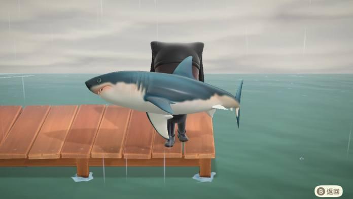動森攻略 6月魚類圖鑑 、物價、鯊魚來襲!