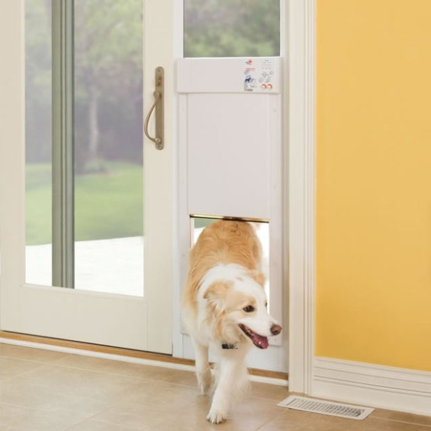 Electronic-Pet-Door