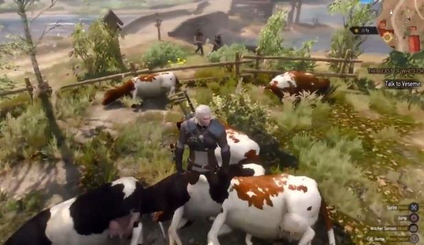 The Witcher 3: Wild Hunt Infinite Money Exploit