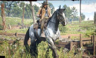 Red Dead Redemption 2 war horse