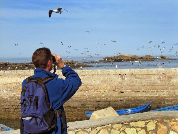 Gadgets for Birding