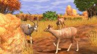 pc_wildlifepark3afrikaamazonase