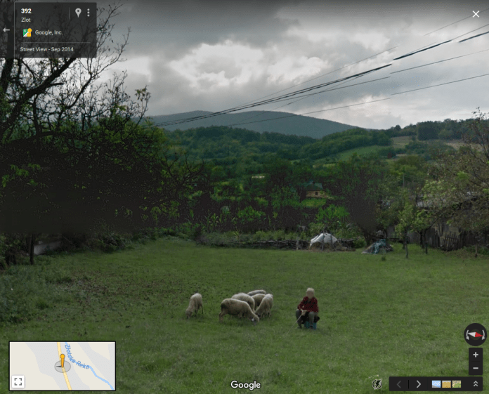 Google Sheep View example