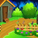 G2L Colourful Garden Escape