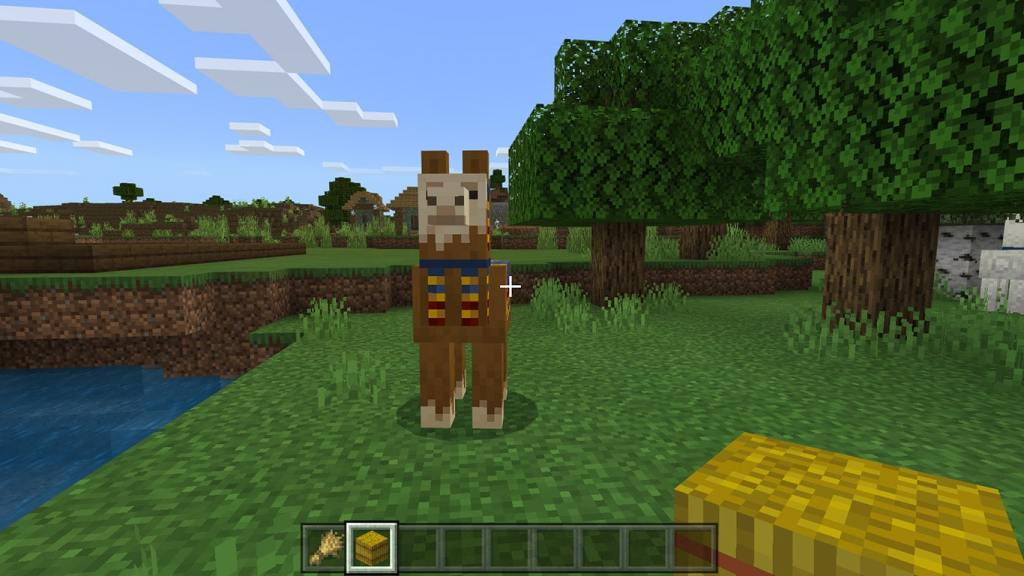 What do Llamas Eat in Minecraft