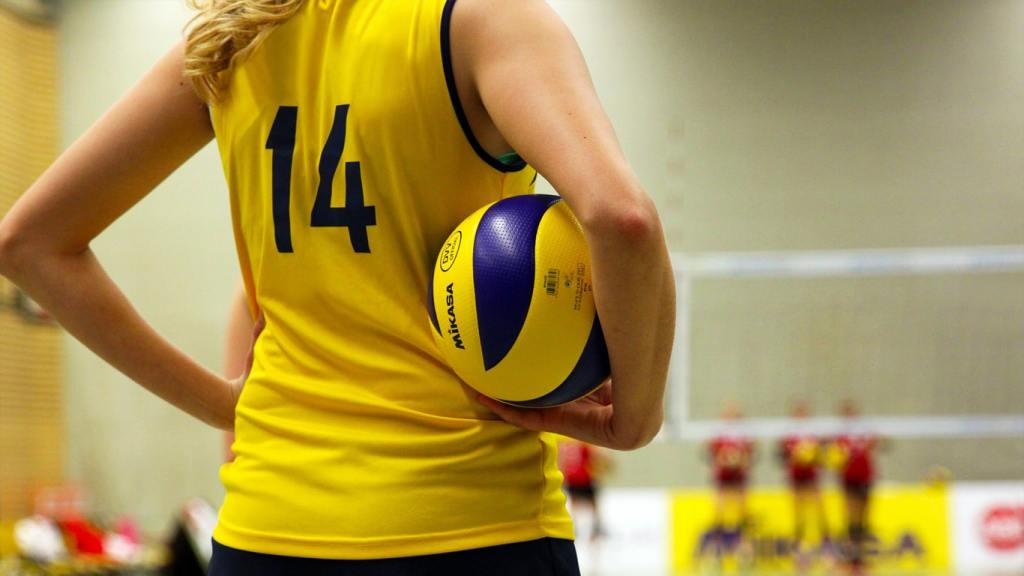 Best Volleyball Games for PC