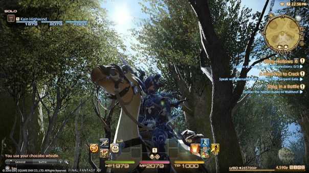 Final Fantasy XIV A Realm Reborn - Calidad visual