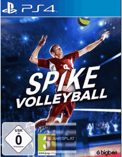 Spike Volleyball PS-4