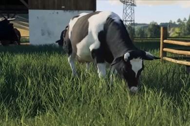 Farming Simulator 19 Animals Guide