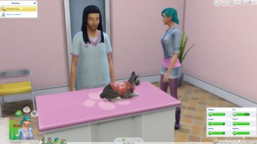 SIMS Chiens et Chats (4)