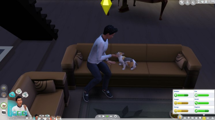 SIMS Chiens et Chats (7)