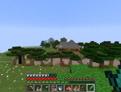 minecraft_tim_1