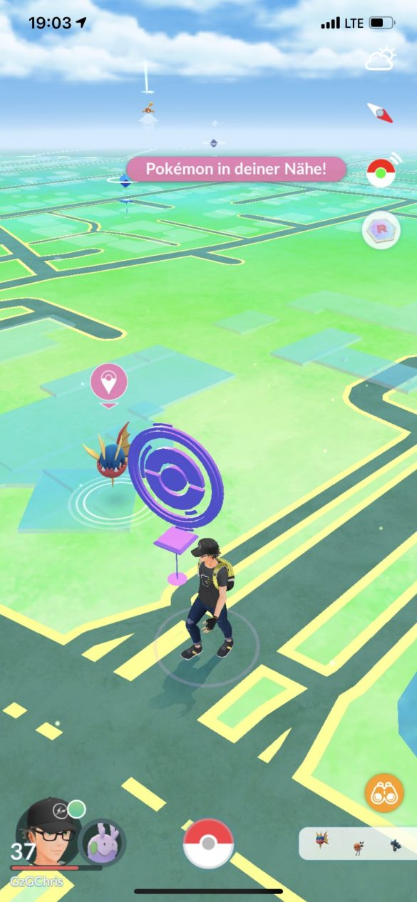 Die Anzeige zeigt, welches Pokémon gerade vom Tool angepeilt wird.