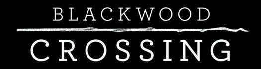 Blackwood Crossing Logo Gaming Cypher