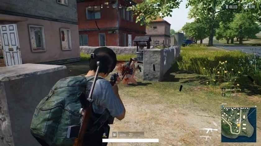 PUBG Gameplay Image 2