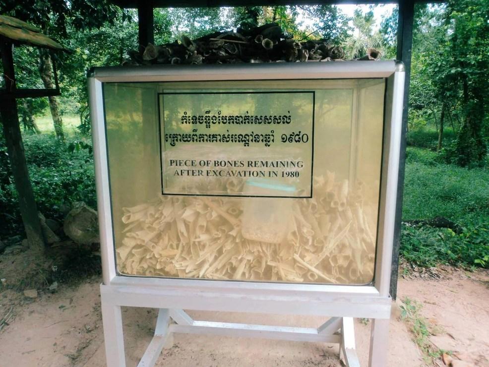 Killing fields, backapcking Cambodia, Things to do in Cambodia, Cambodia travel guide, backpacking Cambodia, Angkor Watt