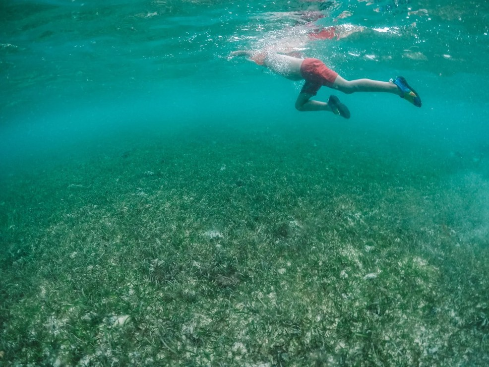 Things to do in Koh Rong, snorkeling and diving