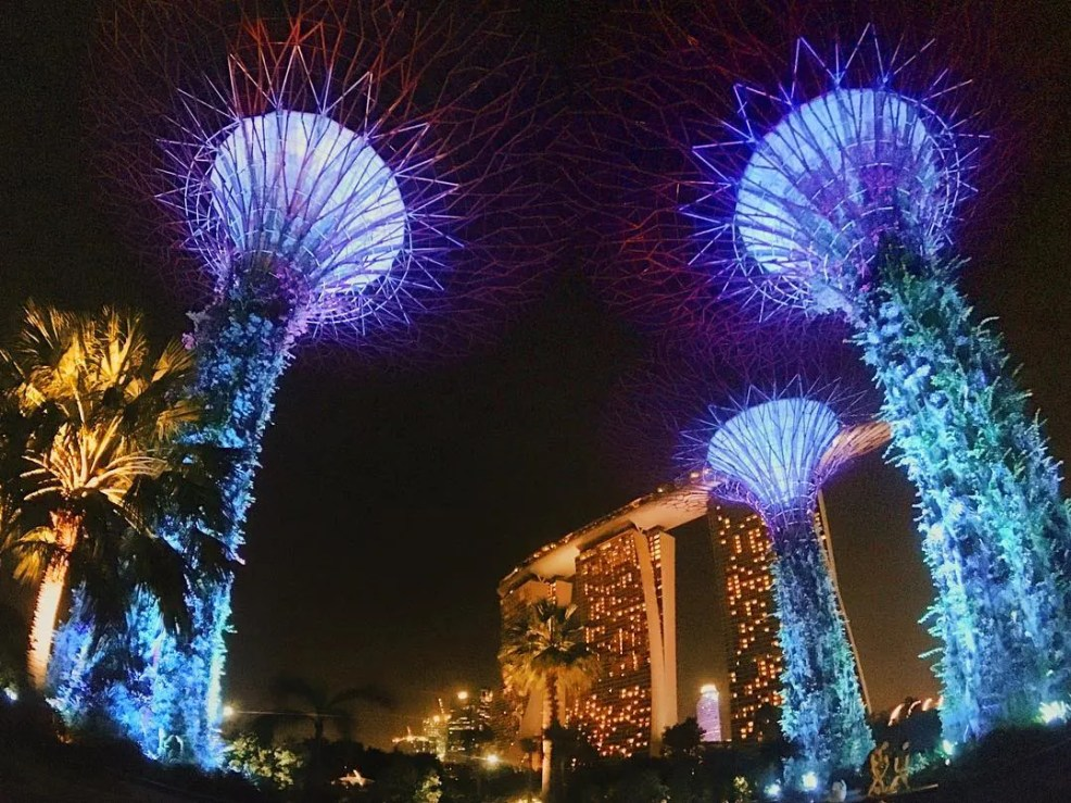 Singapore, Instagrammable places in Singapore, garden by the bay, budget travel in Singapore