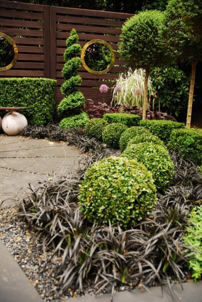 plantes pour un petit jardin