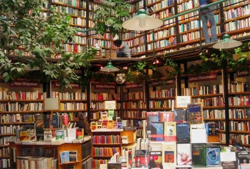 Le librerie saranno importanti anche nel futuro dell'editoria digitale - Gamobu