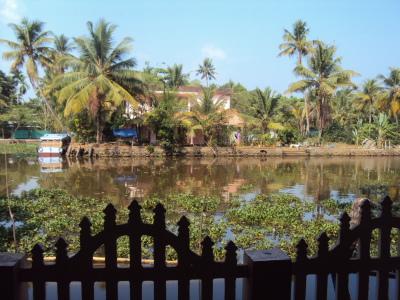 Vue depuis le cottage a Kumarakom