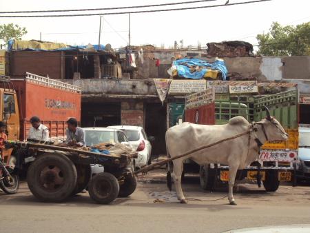 Centre ville de Delhi...
