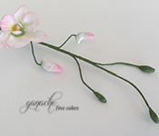 Handcrafted Sugar Flowers- Dendrobium Orchid