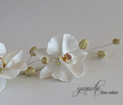 Handcrafted Sugar Flowers- Moth Orchid