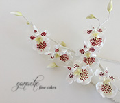 Handcrafted Sugar Flowers- Oncidium Orchid