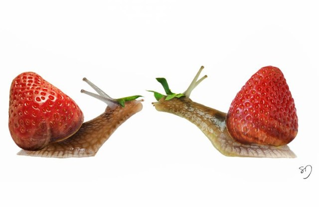Snail & Strawberry