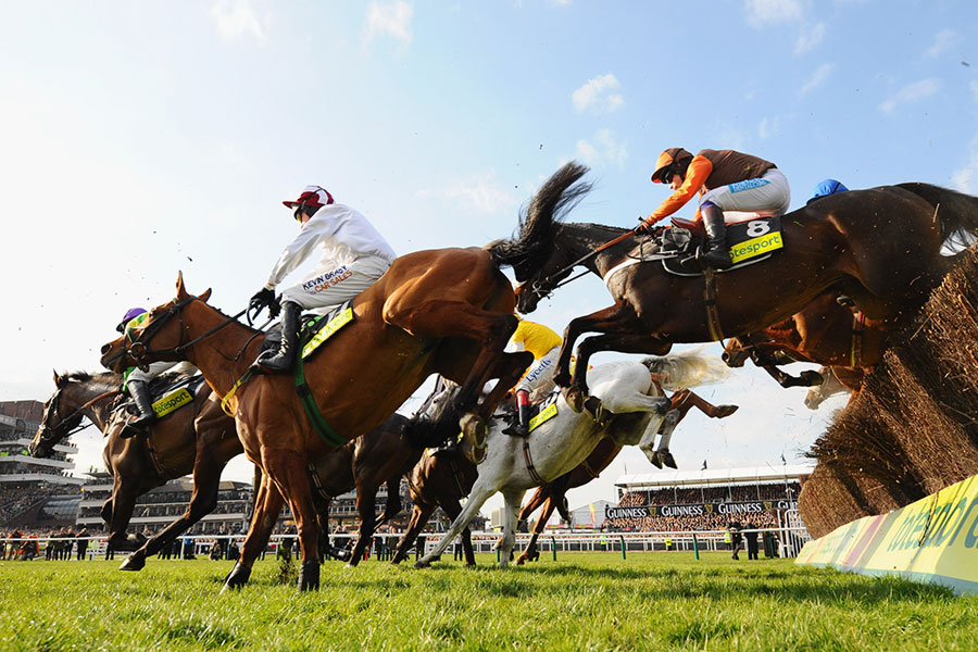 An image of racing in the Cheltenham Festival - book a chauffeur to this event from GandT Executive